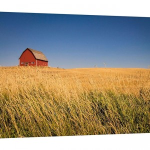 Canvas Wrap - Red Barn