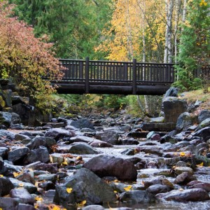 Glacier National Park Foot Bridge at Apgar