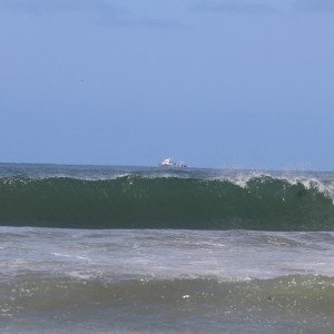 Ocean wave w/Dolphin